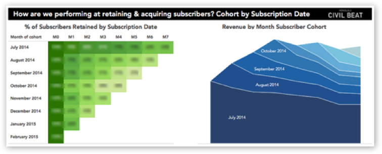 subscriber cohort data visualization