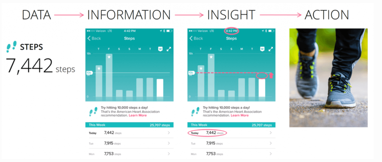 fitbit data visualization - data - information - insight to action