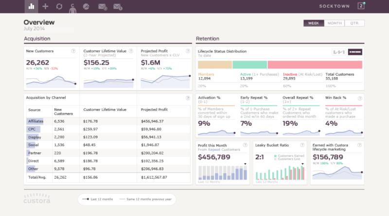 SaaS Metrics KPIs Dashboard example