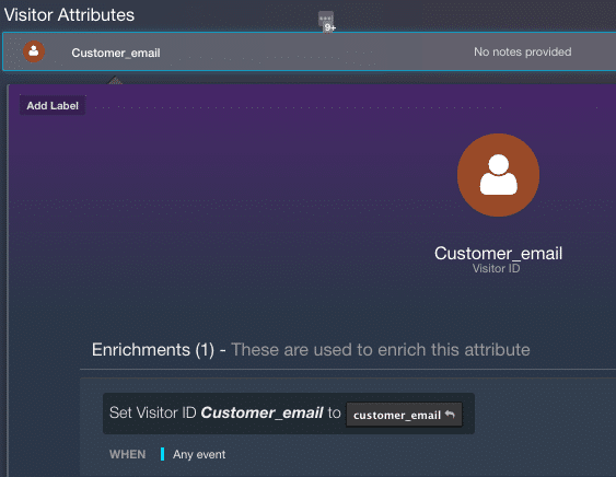 screenshot of AudienceStream visitor attributes