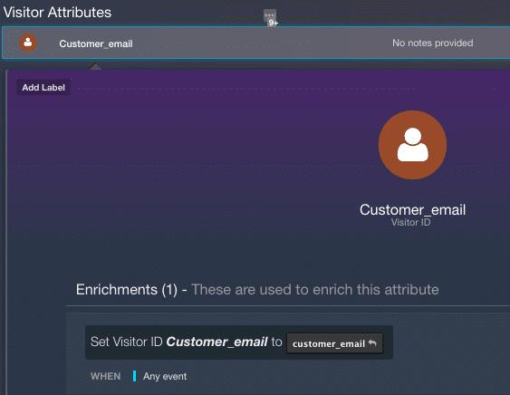 screenshot of AudienceStream visitor attributes