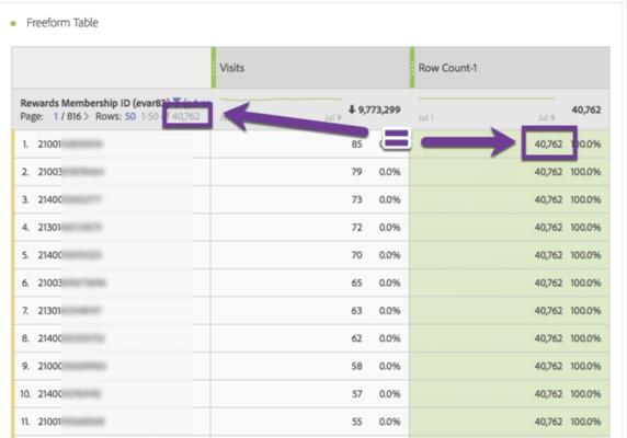 screenshot of adobe analytics freeform panel