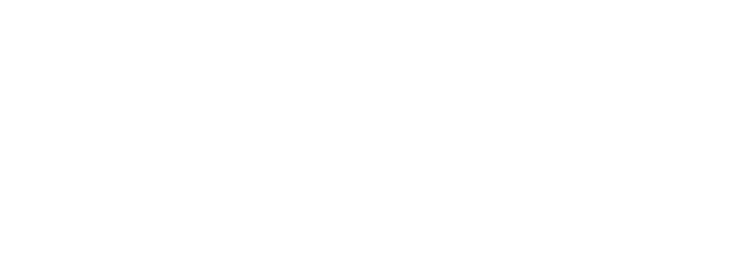 Supporting Leaders to EVOLVE Their Organizations