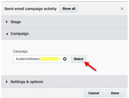 screenshot of responsys campaign selector